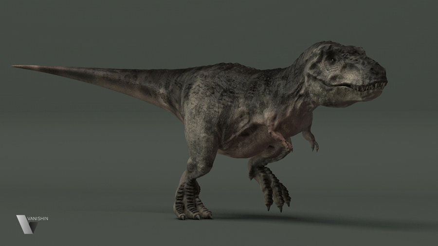 tyrannosaurus_rex_by_vanishin-d4o32z8